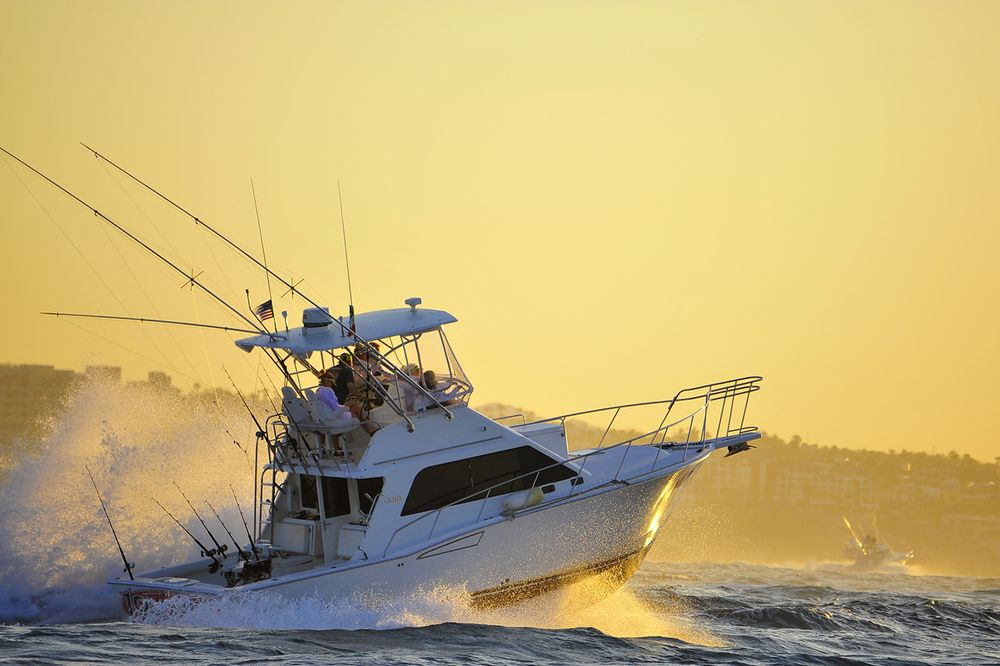 Pelagic Cabo Summer Slam Triple Crown 116