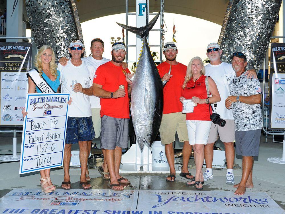 Yellowfin Tuna 2015