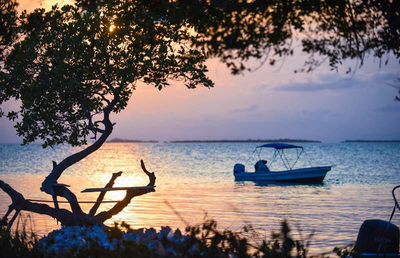 Pelagic Belize Paradise Fishing 15