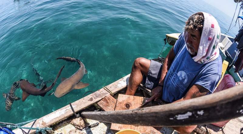 Pelagic Belize Paradise Fishing 16