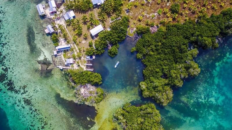 Pelagic Belize Paradise Fishing 17
